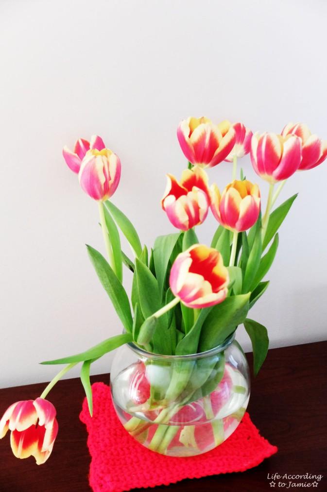 Drooping Tulip