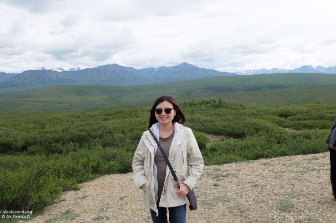Denali National Park - Primrose Ridge