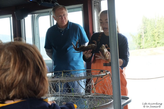 Ketchikan Dungeness Crab Boat Ride