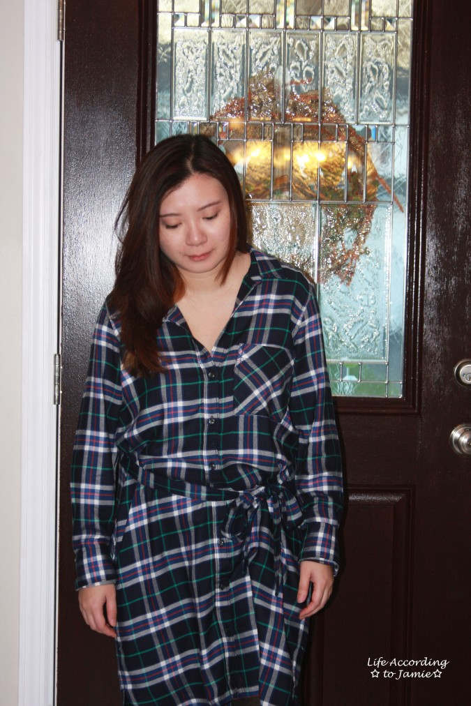 blue-green-plaid-dress-3