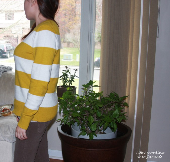 chartreuse-striped-sweater-3