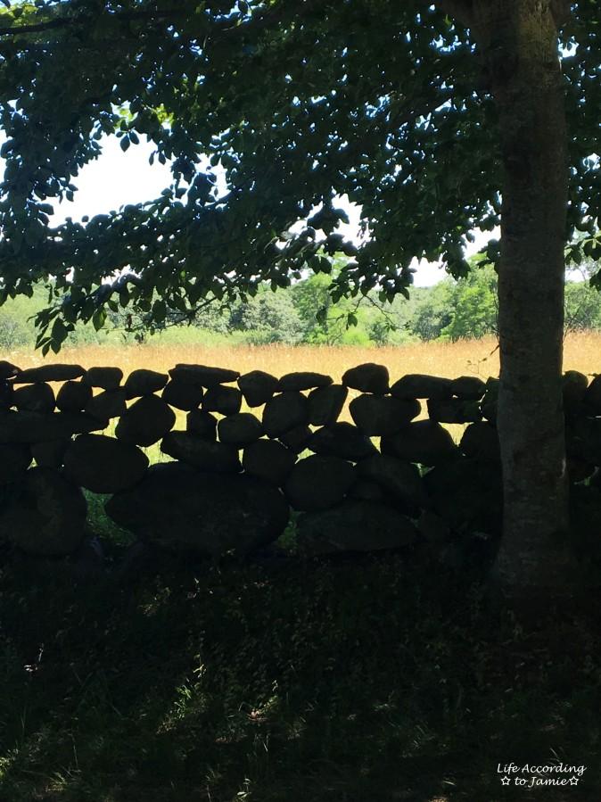 Martha's Vineyard - Stone wall
